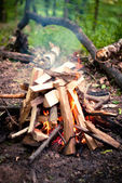 Fire on a picnic in the woods — Foto de Stock