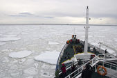 Expedition vessel moving through ice in Antarctic — Stockfoto