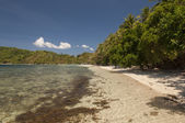 Beach. Port Barton, Palawan, Philippines — Stock Photo