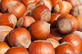 Scattering of hazelnuts — Stock Photo