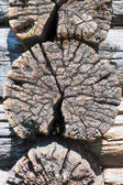 Very old cracked wooden logs — Stock Photo