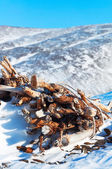 Snow-covered woodpile. — Stock Photo