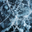 Network of cracks in thick solid layer of ice — Stock Photo #23846129