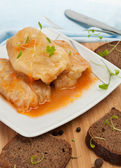 Stuffed Cabbage Roll with Vegetables — Stock Photo