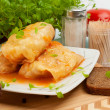 Stuffed Cabbage Roll with Vegetables — Stock Photo #24514593
