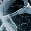 Постер, плакат: Network of cracks in thick solid layer of ice