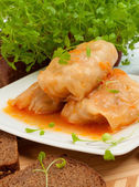 Cabbage rolls on a white plate — Stock Photo