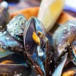 Opened boiled mussels sink. — Stock Photo #31662045