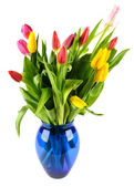 Bouquet of tulips in a blue glass vase. — 图库照片
