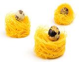 Tři italské vaječné těstoviny hnízdo na bílém pozadí. — Stock fotografie