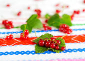 Red currant berries on a leaf. — Stock Photo