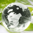 Globe reflection on green leaf — Stock Photo
