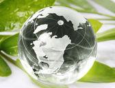 Globe reflection on green leaf — Stock Photo