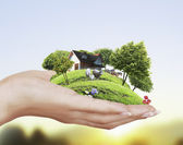 дом холдинг — Стоковое фото