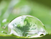 Earth in waterdrop reflection on leaf — Stock Photo