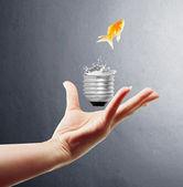 Light bulb, on hand — Stok fotoğraf