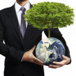 Stock Photo: Holding glowing earth (NASA) globe and tree in his hand