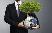 Holding a glowing earth (NASA) globe and tree in his hand — Foto de Stock