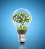 Light bulb Alternative energy concept  — Foto Stock