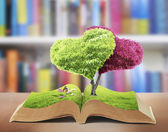 Open book of nature — Stock Photo
