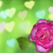 Roses and Hearts background — Stock Photo #39502881