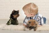 小男孩与小狗 — 图库照片