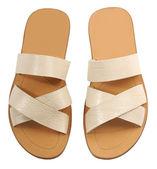Fashion shoes — Stock Photo