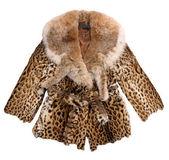 Fashion fur coat — Stock Photo