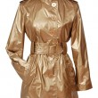 Golden coat — Stock Photo #31639487