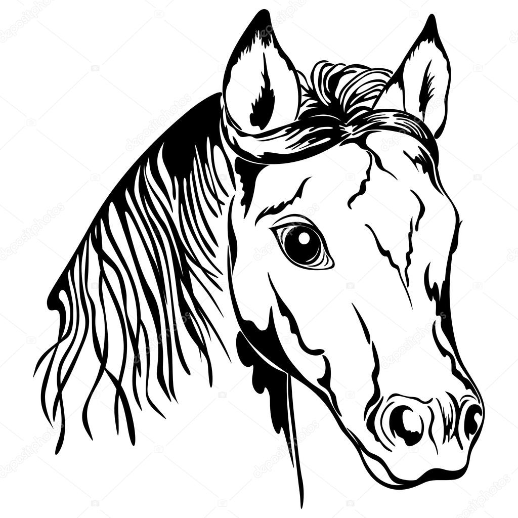 Horse black and white clipart