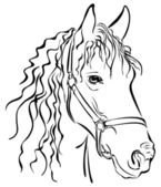 Closeup sketch of horse — Stockvektor