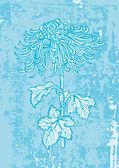 Chrysanthemum flower — Stock Vector