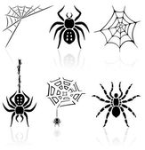 Spider icons — Stock Vector