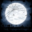 Halloween background with spider — Stock Vector #27375149