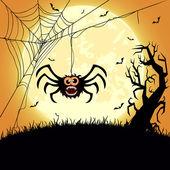 Araignée — Vecteur