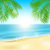 Palms on the beach — Stock Vector