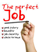 The perfect job — Stock Photo
