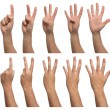 Set of counting hands isolated on white background — Stock Photo #49880723