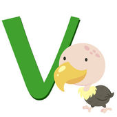 Animal alphabet V — Stock Vector