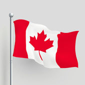3d vector Canada flag — Stock Vector