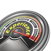 Vector experience conceptual meter indicator — Stock Vector