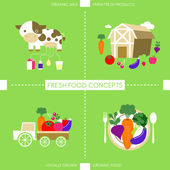 Flat design icons for organic food and drink — Stock Vector