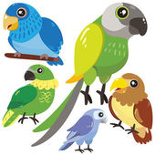 Five birds on white background  — Stock Vector