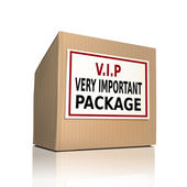 Very important package on a paper box  — Stock Vector