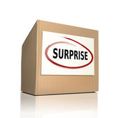 Surprise on a paper box  — Stock Vector