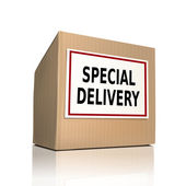 Special delivery on a paper box — Stock Vector