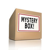 Mystery box on a paper box  — Stock Vector