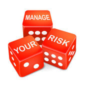 Manage your risk words on three red dice — Stock Vector