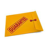 Guarantee stamp on manila envelope  — Vettoriale Stock