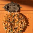 Welcome sign and wreath on wooden door  — Stockfoto